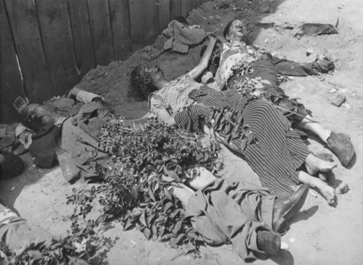 Трупи+осіб,+убитих+НКВС+(радянської+таємної+поліції)+у+дворі+в'язниці+міста+Львова